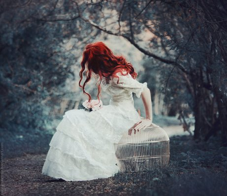 nestling_by_pure_insomnia-d5oaiza
