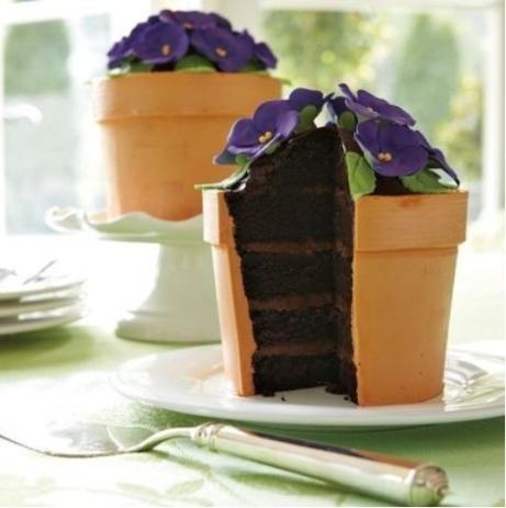 Potted African Violet Cake
