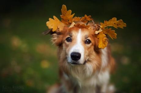 my_autumn_kim_by_ksuksa_raykova-d834b5l
